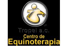 Tropel A.C. Centro de Equinoterapia Guanajuato Foto