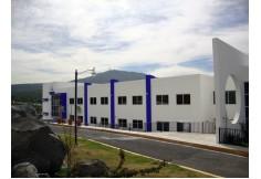 Foto Centro UNIDEP - Universidad del Desarrollo Profesional Online México