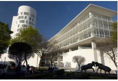 Tecnológico de Monterrey - Educación Ejecutiva México