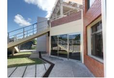 Foto Universidad Olmeca