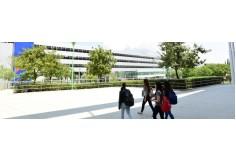 Centro Behind-U Education en Alianza con Universidad TecMilenio Maestrías Online Nuevo León