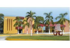 UAG - Universidad Autónoma de Guadalajara Online Jalisco Foto