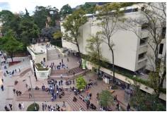 Foto Pontificia Universidad Javeriana Educación Continua - Virtual