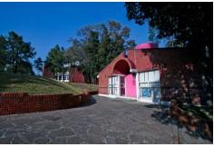 Foto Centro Universidad Albert Einstein Isidro Fabela